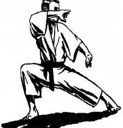 Kata shotokan