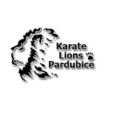 profi karate