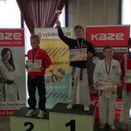 Evropský pohár v karate - Grand Prix Ústí nad Labem 2013