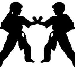 Karate Lions Pardubice Camp 2014