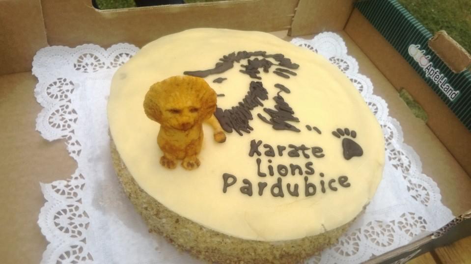 """Karate Lions Pardubice """"... jako lev."""""""